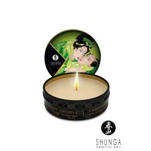 Mini bougie de massage Lueur et Caresse SHUNGA Thé vert